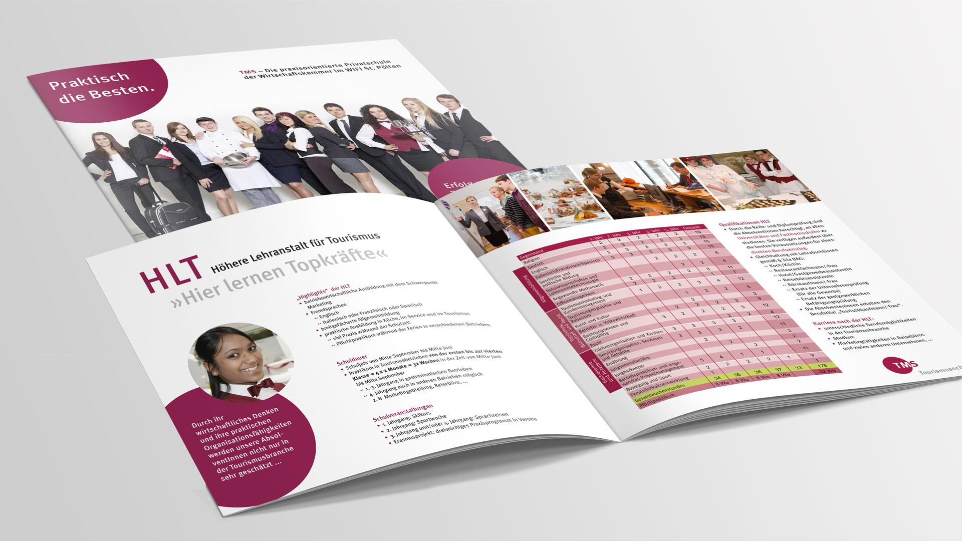 TMS Broschüre